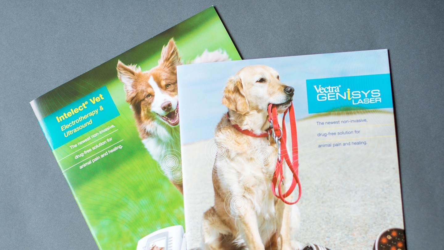 PetSafe Vet Therapies
