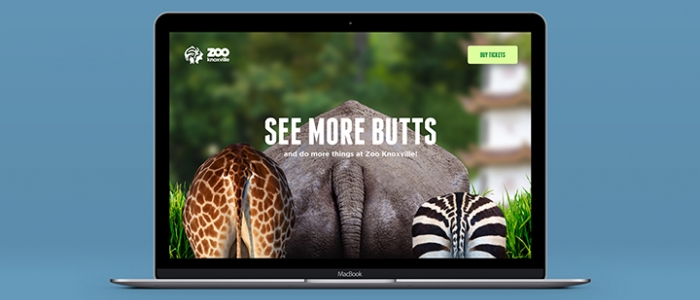 Zoo Knoxville 2019 Micro Campaigns