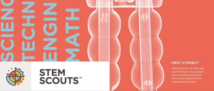 STEM Scouts Print Collateral