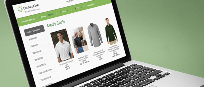 CenturyLink Website Development