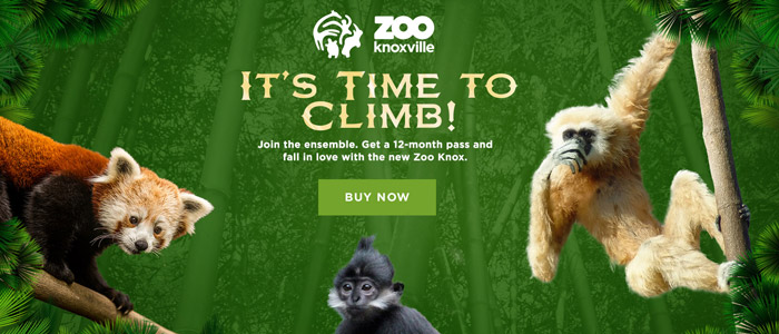 Zoo Knoxville 2017 Micro Campaigns